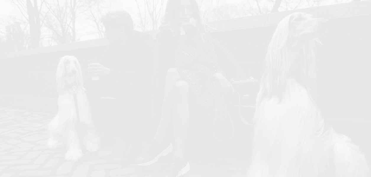 Michael Kors с нов генерален изпълнителен директор