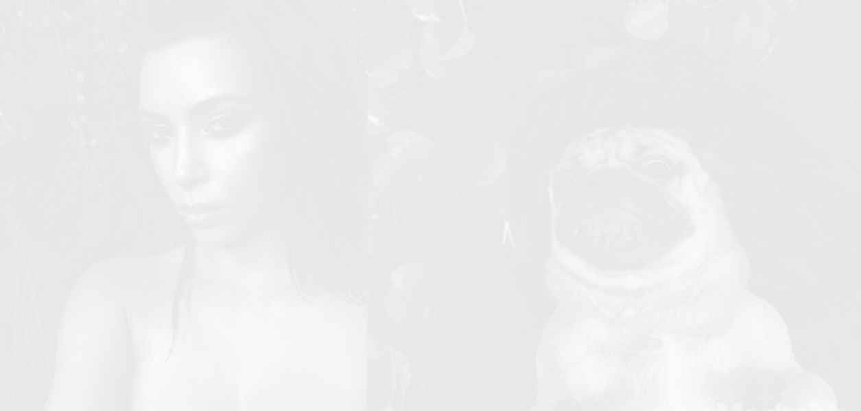 Мопсът Дъг пресъздаде секси селфитата на Ким Кардашиян