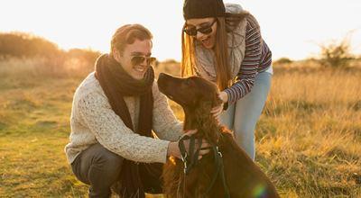 Как да осигурим по-добър живот на четириногите си любимци?