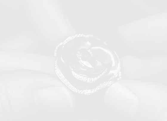 Цъфтящи рози върху ръцете: новите пръстени Dior Rose Pop